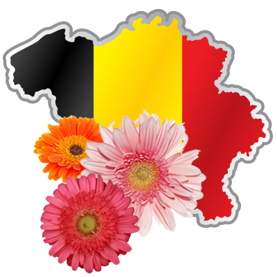 bloemen leveren in België doe je natuurlijk via bloemen Blavier