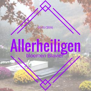 allerheiligen2016-bloemenblavier-gingelom